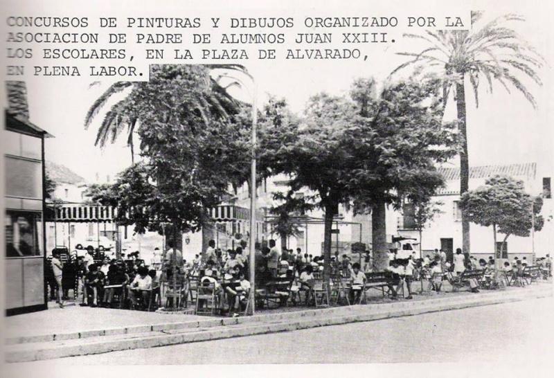 Incidencias en algunas palmeras de la Plaza Alvarado 1palme14