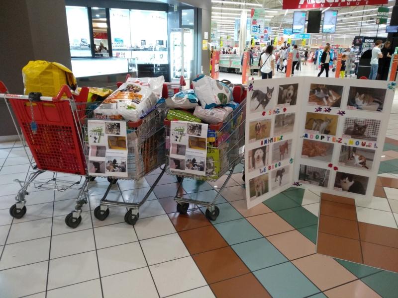 Collecte à Auchan Aubière Img_2012