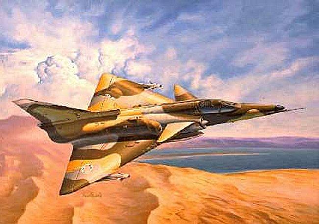 La chasse aux oies par des avions de combat Avion10