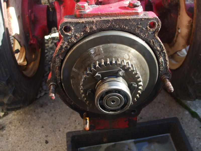 energic - energic Dscf1612
