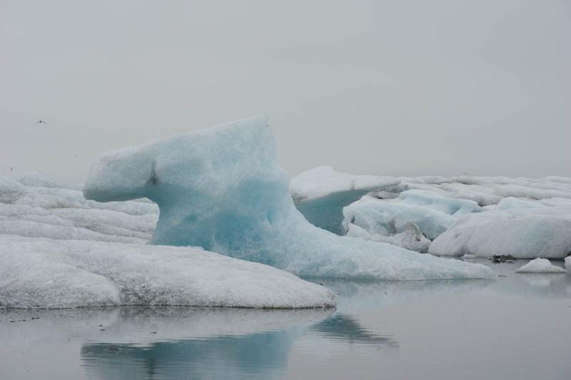 L'Islande en juin-juillet 2014 Imk30610
