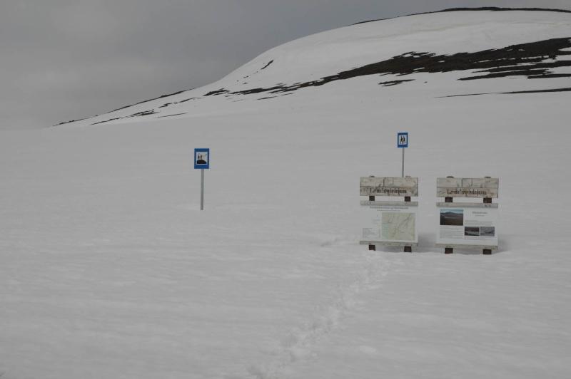 L'Islande en juin-juillet 2014 Island35