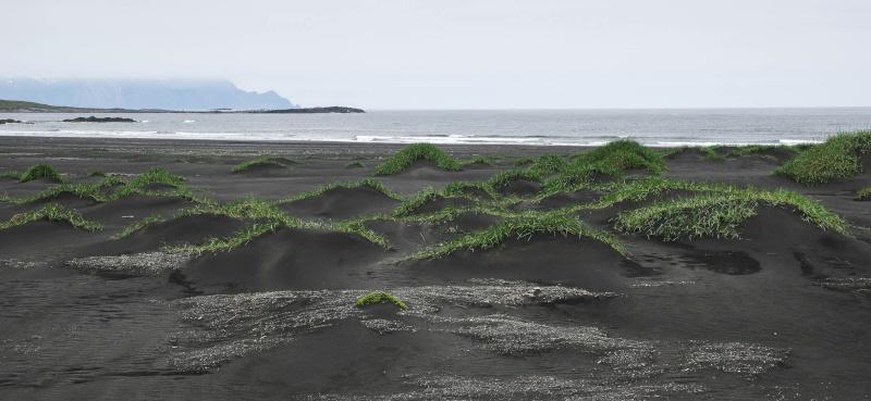 L'Islande en juin-juillet 2014 Island38