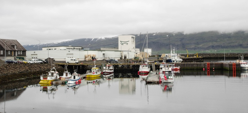 L'Islande en juin-juillet 2014 Island42