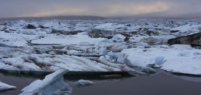L'Islande en juin-juillet 2014 Island52