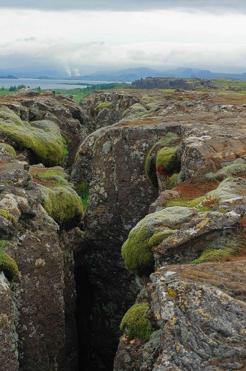 L'Islande en juin-juillet 2014 Island71