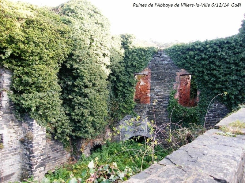 CR du samedi 6/12/14 dans le Brabant wallon 4416