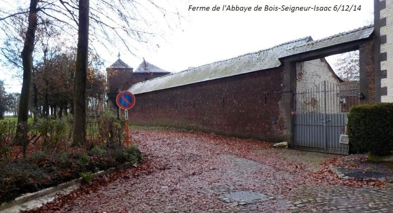 CR du samedi 6/12/14 dans le Brabant wallon 5013