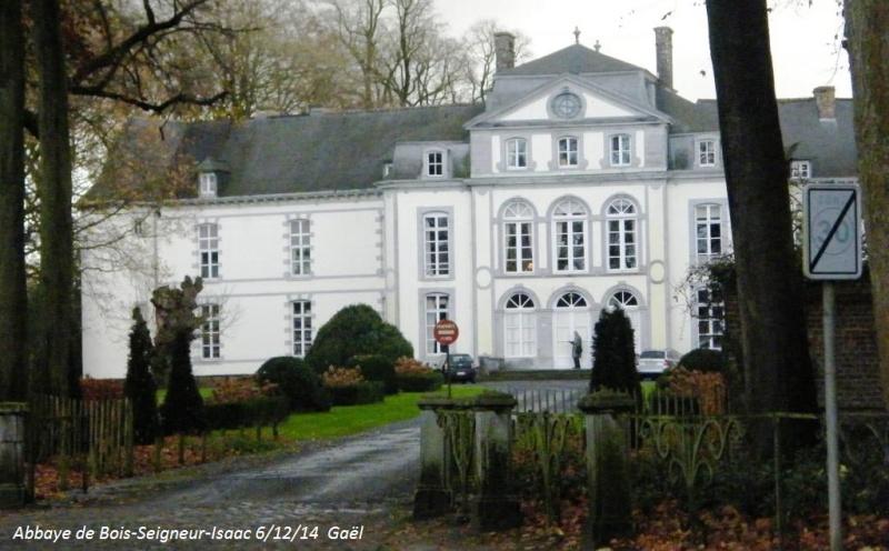 CR du samedi 6/12/14 dans le Brabant wallon 5213