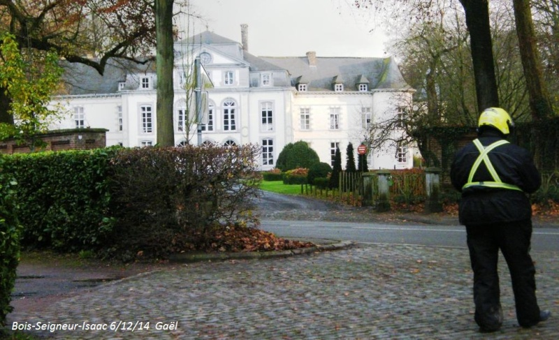 CR du samedi 6/12/14 dans le Brabant wallon 5313