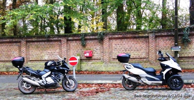 CR du samedi 6/12/14 dans le Brabant wallon 5512