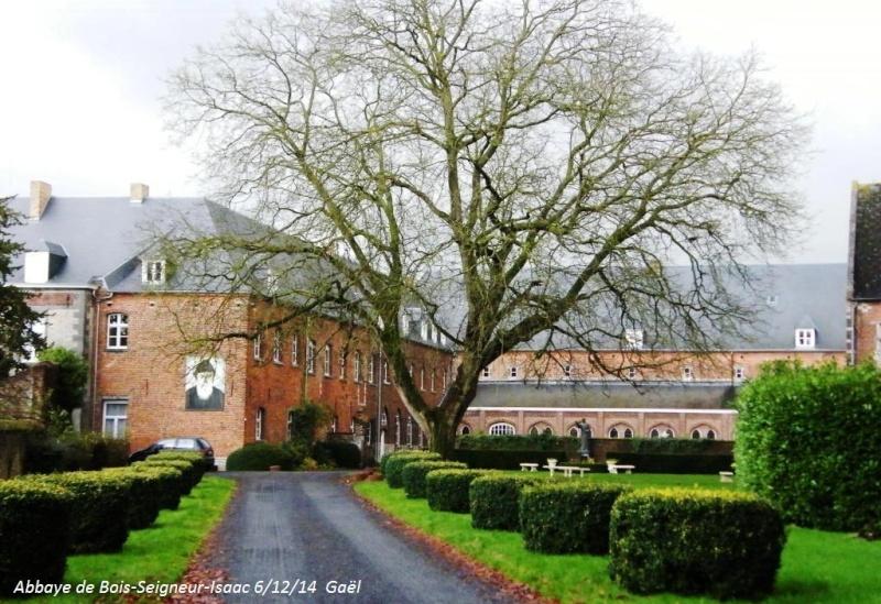 CR du samedi 6/12/14 dans le Brabant wallon 6414