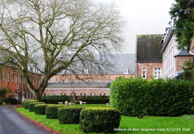 CR du samedi 6/12/14 dans le Brabant wallon 6614