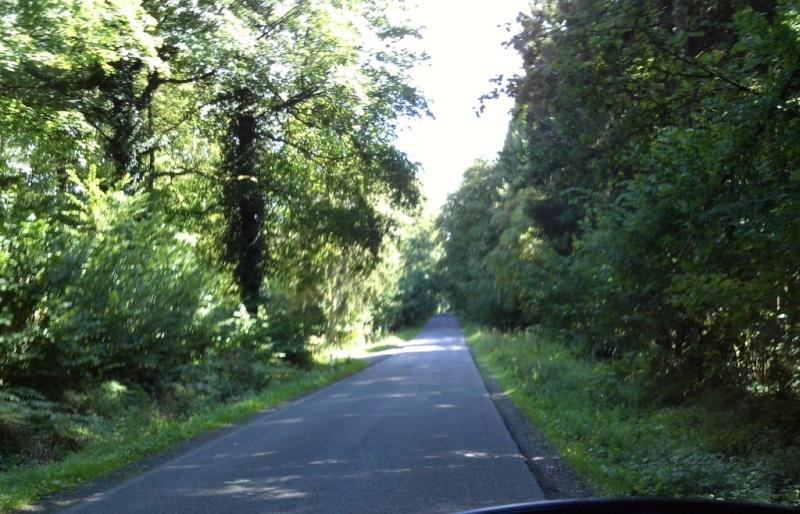 Promenade du 18/8/14 en Haute-Meuse belge Img_0030