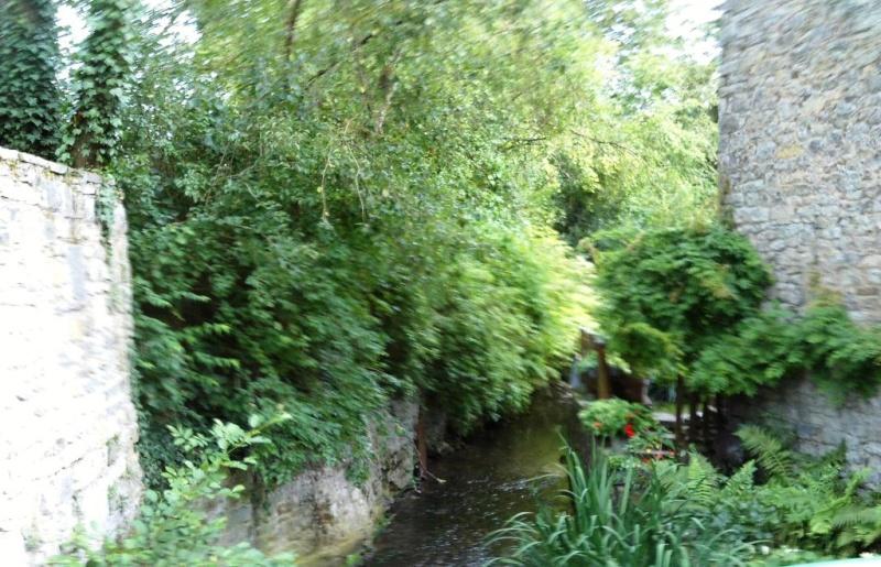 Promenade du 18/8/14 en Haute-Meuse belge Img_0098