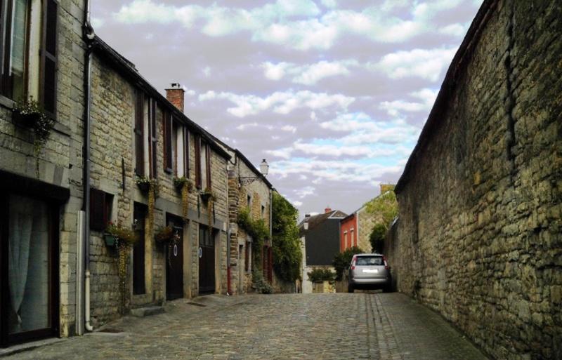 Promenade du 18/8/14 en Haute-Meuse belge Img_0099