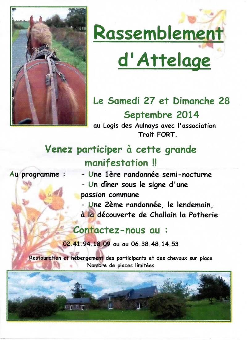 Rassemblement d'attelages au Logis des Aulnays les 27 et 28 septembre 2014 Randon10