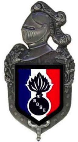 PRÉSENTATION DE LA JEUNE ASSOCIATION RGSE Logo_o12