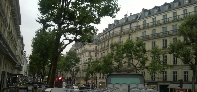 En passant par Paris, nous sommes allés voir Rémy... Wp_20132