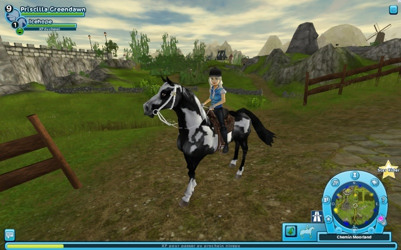 Star Stable (MMO) - Page 3 Captur10