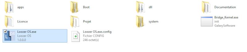 [resolu par Fandeonepiece2]Mettre tout les dll dans un dossier Captur16
