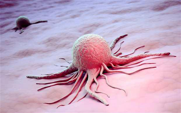 Interesting Article on Cancer Cancer10