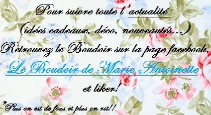 Le Boudoir de Marie-Antoinette Hhbjlb10