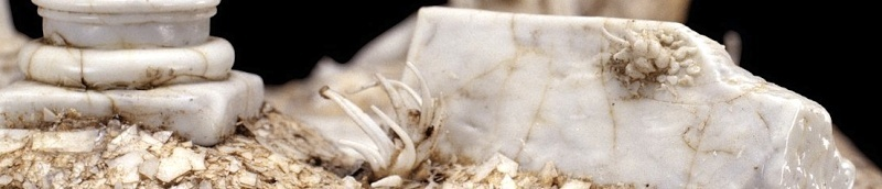 Dioramas et Marie-Antoinette  Unknow40