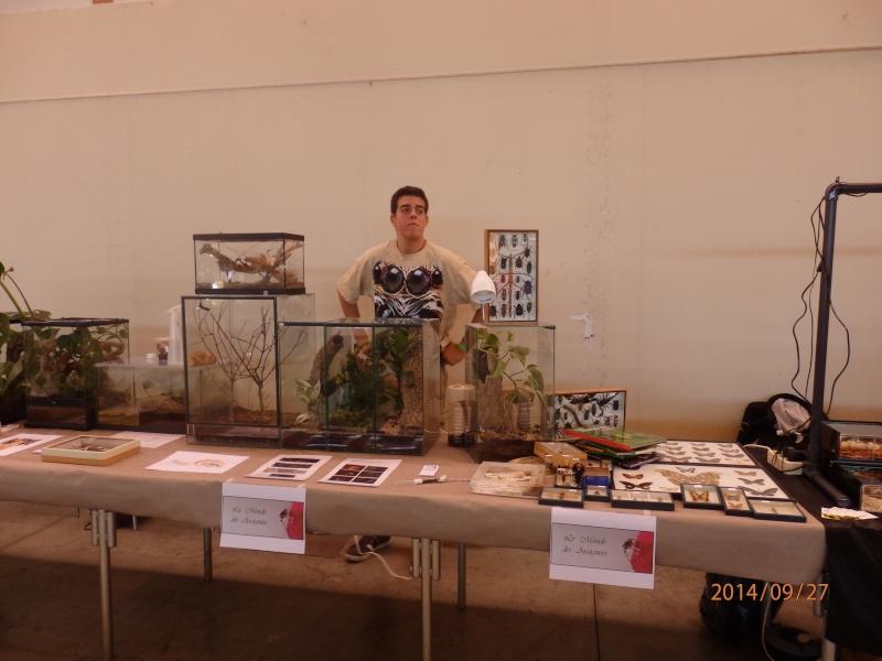 Exposition Nîmes 26 et 27 septembre 2014 P9270810