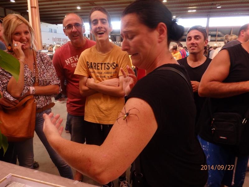 Exposition Nîmes 26 et 27 septembre 2014 P9270813