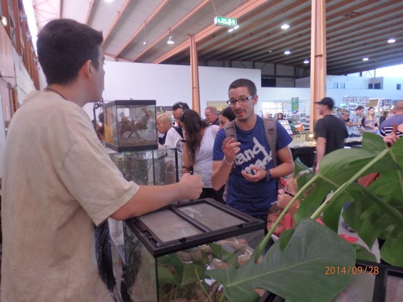 Exposition Nîmes 26 et 27 septembre 2014 P9280810