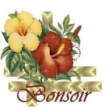BONJOUR-BONSOIR DU MOIS D'AOUT - Page 3 Bonsoi10