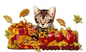 BONJOUR-BONSOIR DU MOIS D'AOUT - Page 3 Bonsoi11