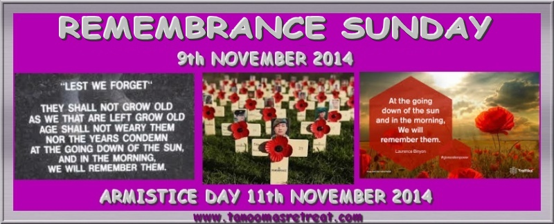 Remembrance Sunday 9th November - Remembrance Day 11th November Untitl19
