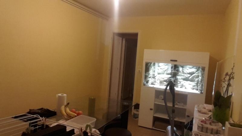 Premier appartement, du sol aux murs est les meubles. 20141033