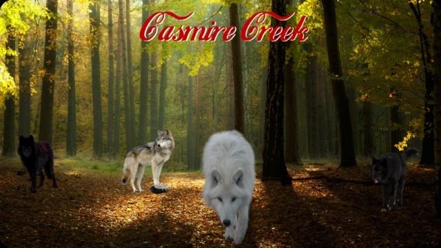 Casmire Creek Banner14