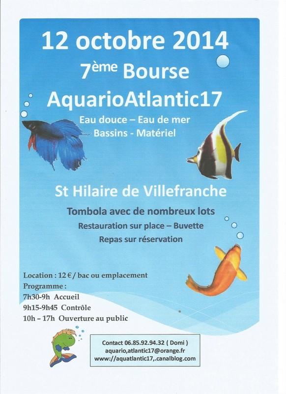Bourse aquariophile Charente-Maritime (17) Bourse10