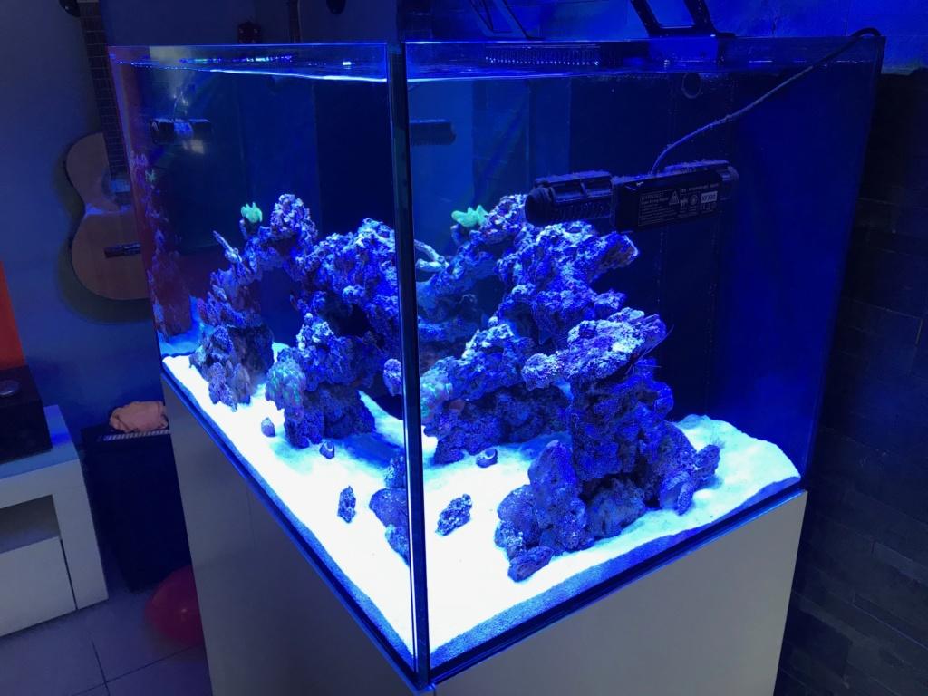 Waterbox Reef 100.3 de Memete Img_8814