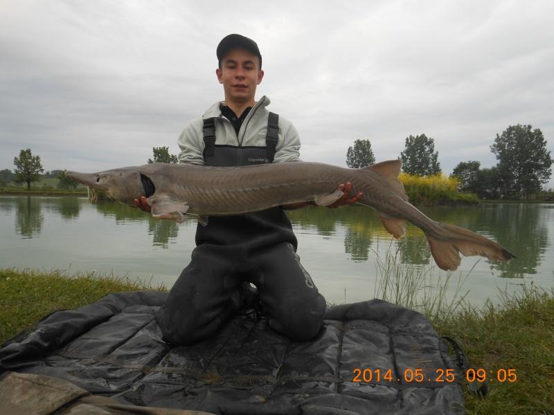 les poissons 2014 de toto ! Dscn5811