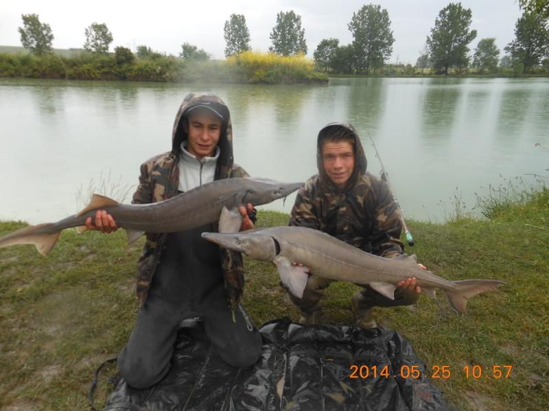 les poissons 2014 de toto ! Dscn5910