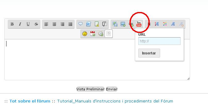 Manual d'instruccions_Publicar un video a youtube Forum11