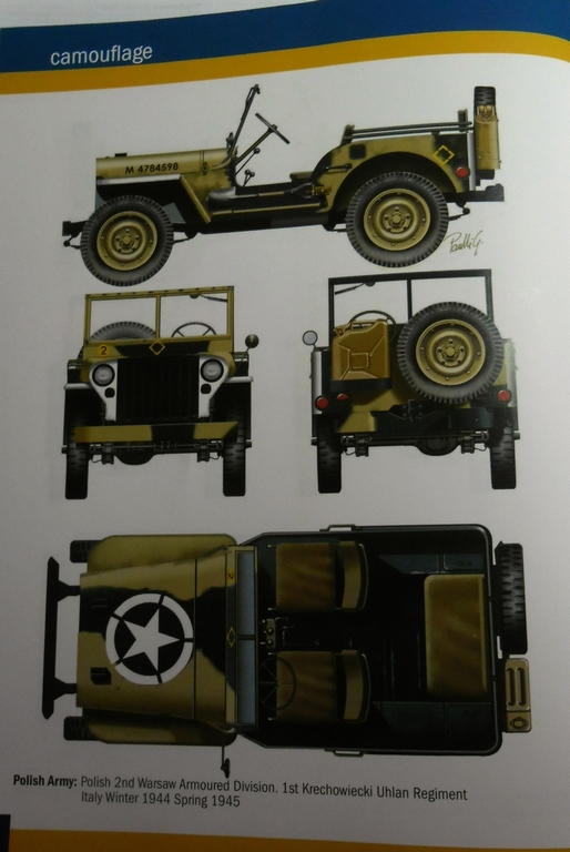 Jeep Willys Italeri 1/24 (ref: 6351) (débuts peintures) Dyco_014