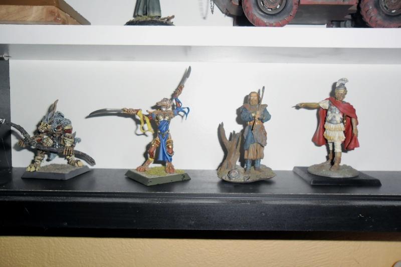 Warhammer, fantasy et historiques Warham13