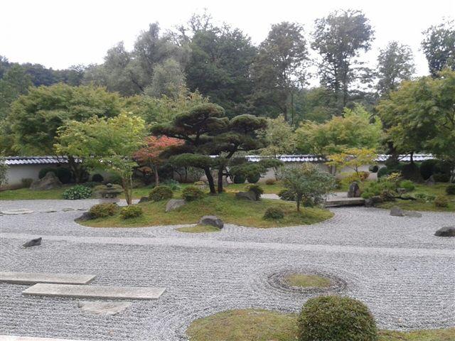 Bambus - Kultur, Aussaat, Pflege, Diskussion und Bilder von Bambusa und Fargesia - Seite 2 Japani10