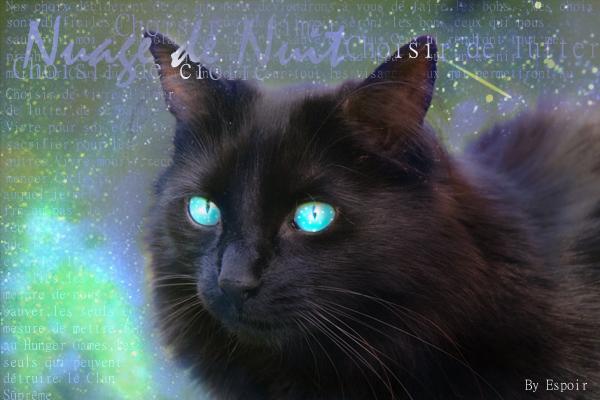 (L1) La Naissance [PV: Guérisseur, les chatons et Griffe] Nuage_10