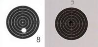 """Concours permanent bimestriel """"groupement & 100pts"""" sur cible CC A4 : Juillet aout  2014 - Page 3 Visuel10"""