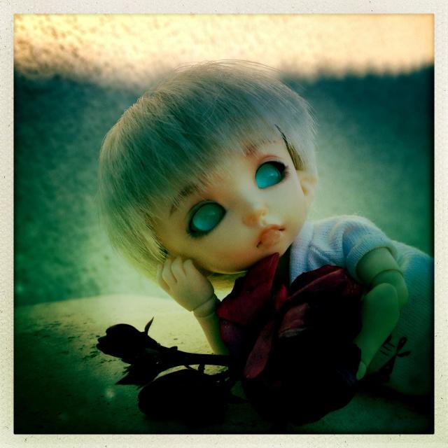 My little faery World (PKF-PKPK) 05310
