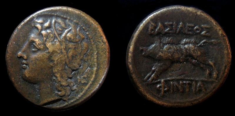 Les petites grecques de Proklès Img_0910