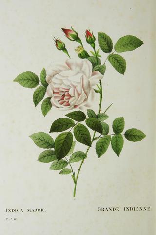 A vendre: livres sur Marie-Antoinette, ses proches et la Révolution - Page 2 D3bde410