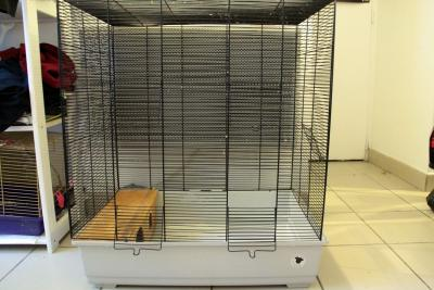 Vend cage 3 ou 4 rats [33] - 30€ Light-11